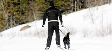 BAGGEN® Dog Equipment