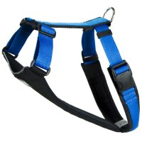 Running harness