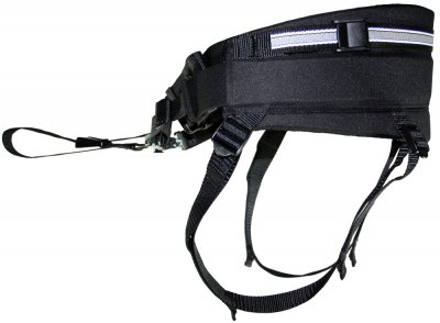 skijor belt