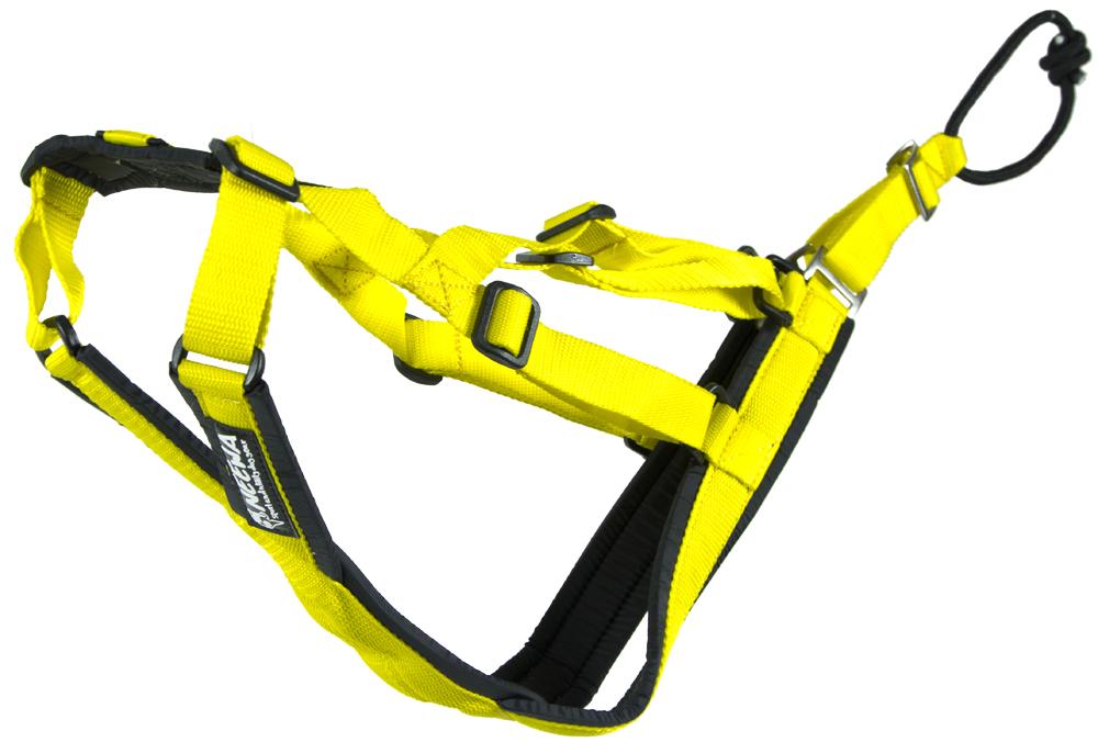 BAGGEN® | Neewa Dog Gear | Sled dog harness